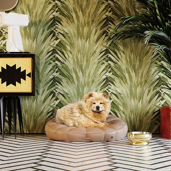 ACH4 pet accessories - New decor collection for Dogs and Cats