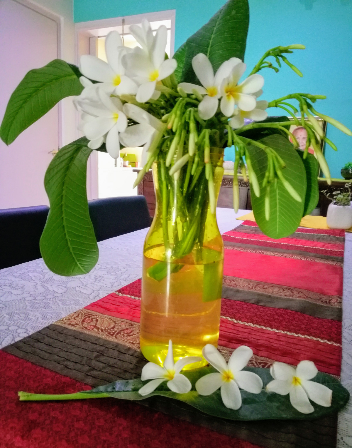 DIY home decor using flower Plumeria in appe bottle Design dekko