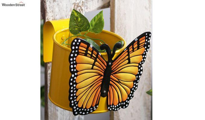 butterfly citrus pot planter design dekko
